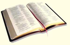 Biblia Abierta Amigos Cristianos Gabitos