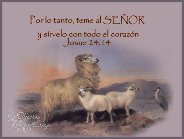 Postales Biblicas Libro De Josue Postales