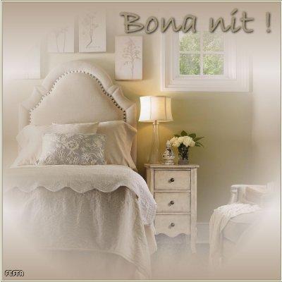 Bona nit amics catalunya universal gabitos for Bona nit muebles